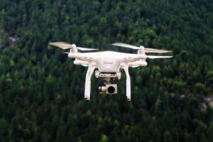 Drohne vor Wald