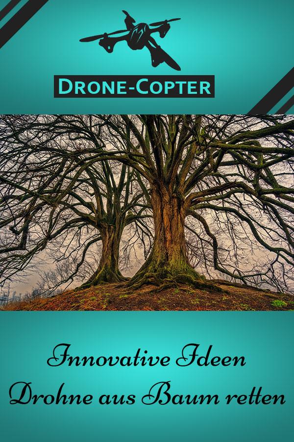Drohne aus Baum retten